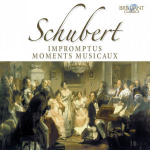 Schubert: Impromptus - Moment musicaux