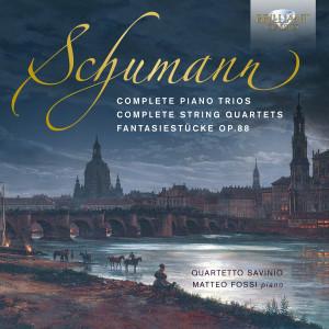 Schumann: Complete Piano Trios, Complete String Quartets, Fantasiestücke, Op. 88